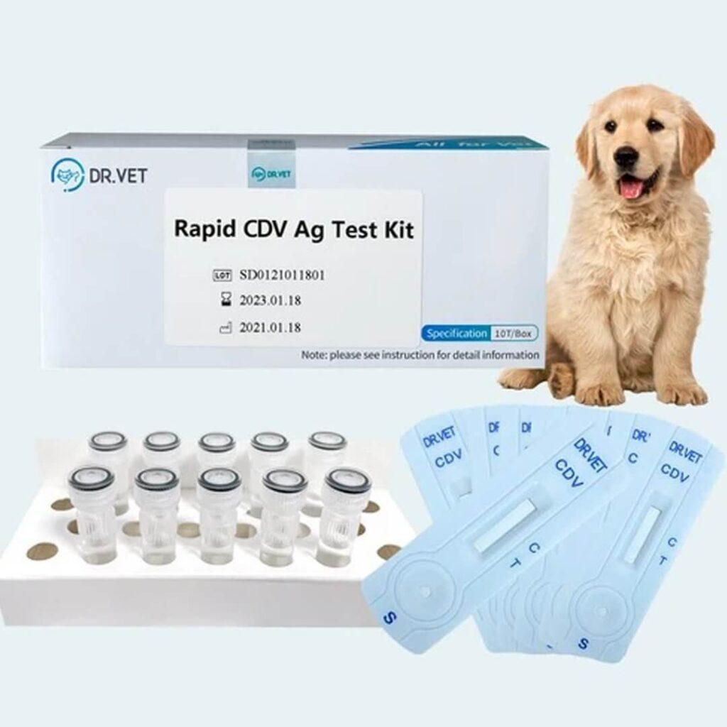 dog canine distemper test kit